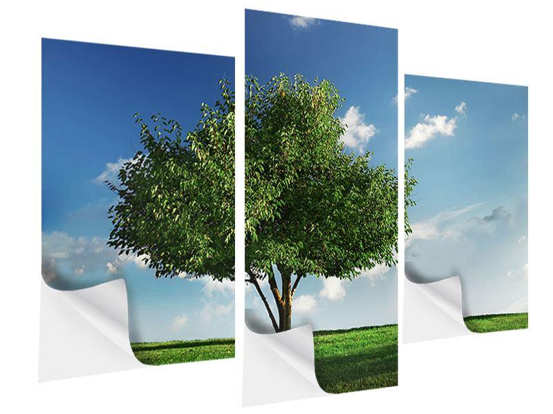 Klebeposter 3-teilig modern Baum im Grün