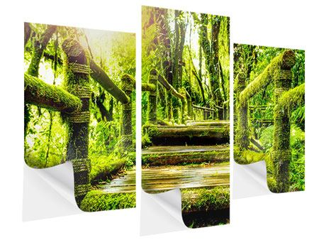 Modern 3 Piece Self-Adhesive Poster Moss