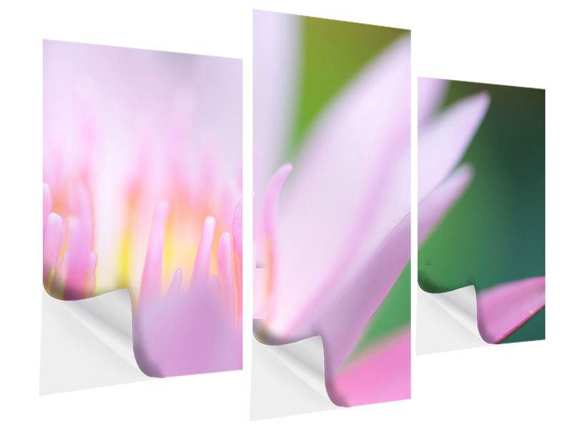 Klebeposter 3-teilig modern XXL-Lilie