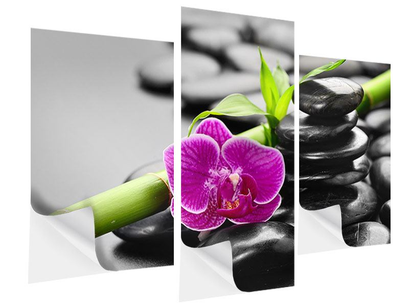 Klebeposter 3-teilig modern Feng-Shui-Orchidee