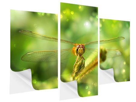 Klebeposter 3-teilig modern XXL-Libelle