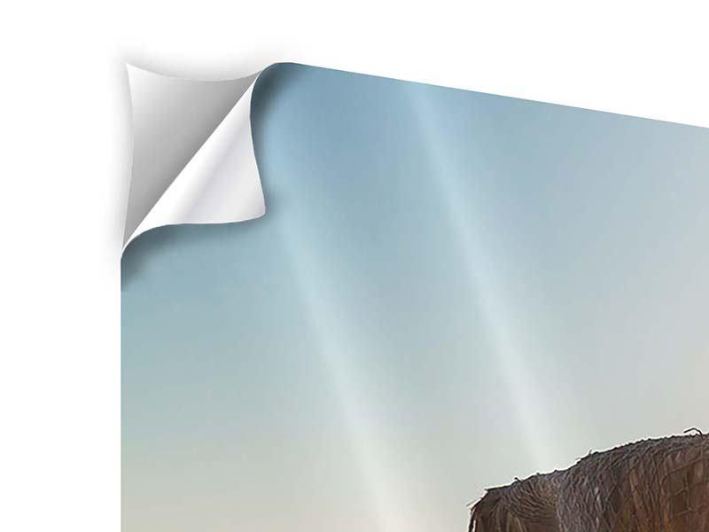 Klebeposter 3-teilig modern Der Sonnenschirm