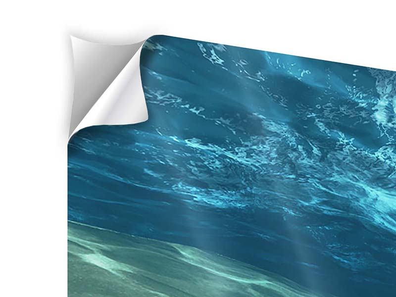Klebeposter 3-teilig modern Unter dem Wasser
