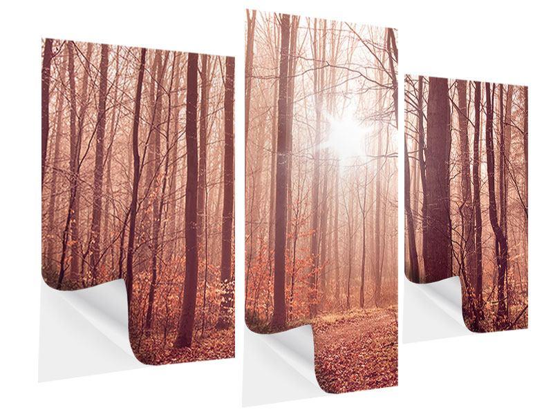 Klebeposter 3-teilig modern Sonnenuntergang im Herbstwald