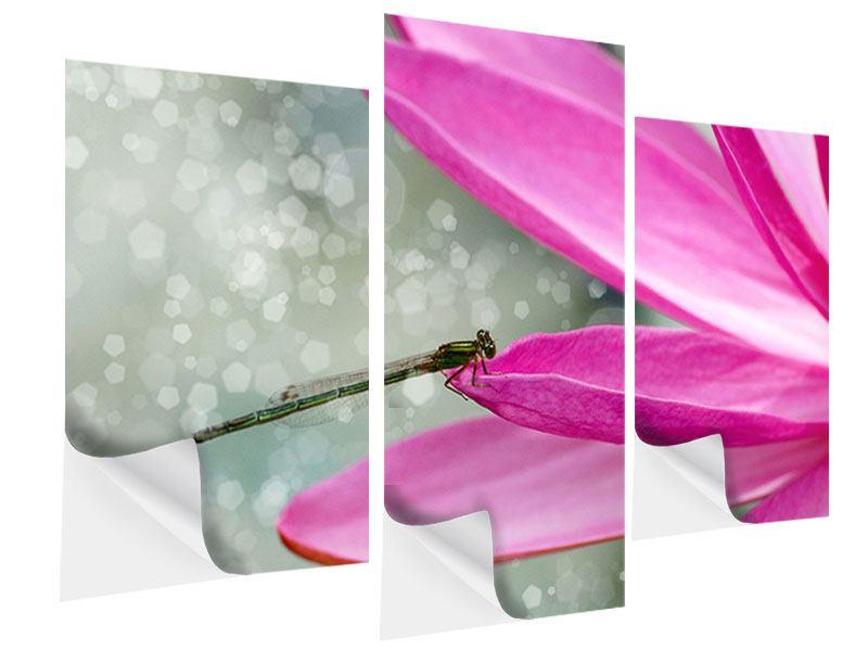 Klebeposter 3-teilig modern Libelle auf dem Seerosenblatt
