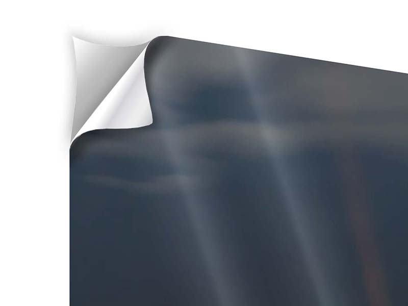 Klebeposter 3-teilig modern Seerose in der Abenddämmerung