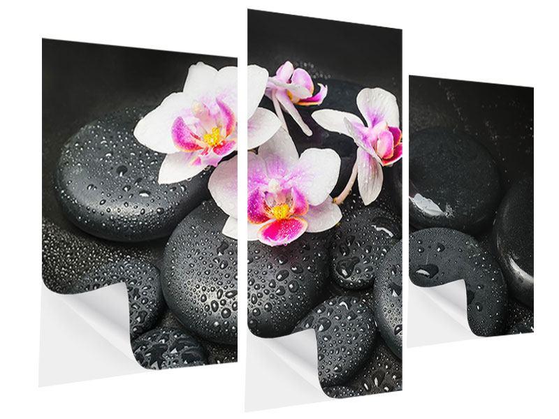 Klebeposter 3-teilig modern Feng-Shui-Orchidee Zen