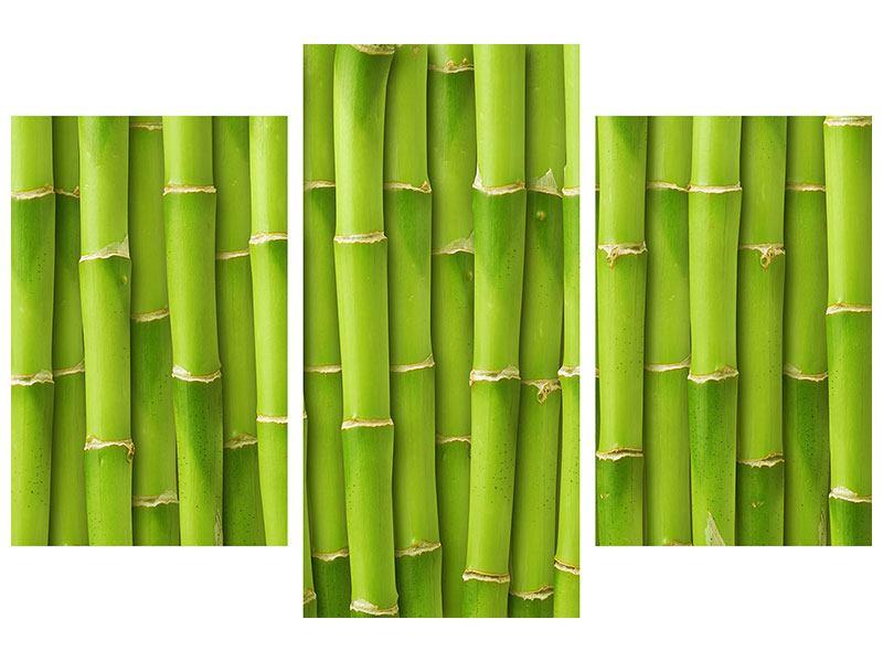 Klebeposter 3-teilig modern Bambuswand