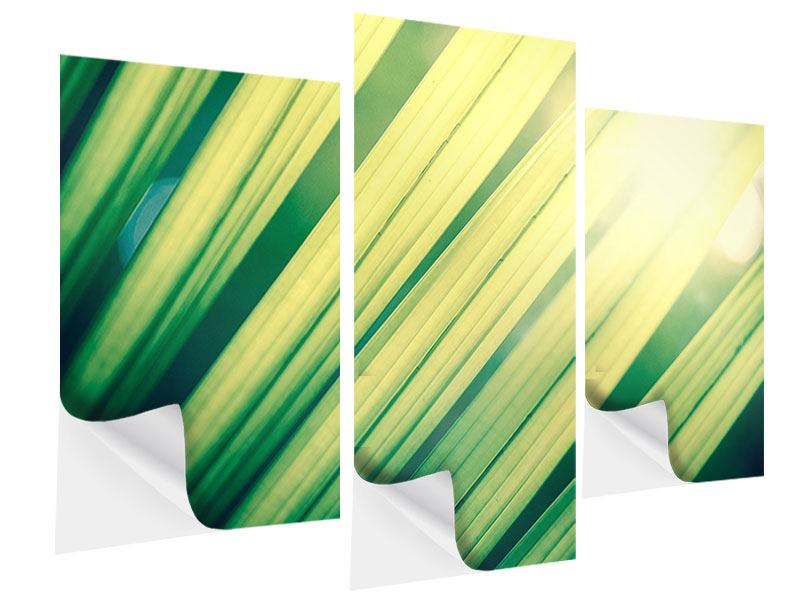Klebeposter 3-teilig modern Beleuchtetes Palmblatt