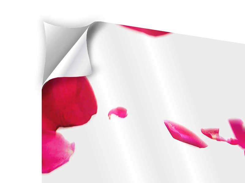 Klebeposter 4-teilig modern Für mich soll`s rote Rosen regnen
