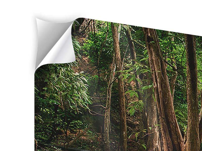 Klebeposter 4-teilig modern Deep Forest