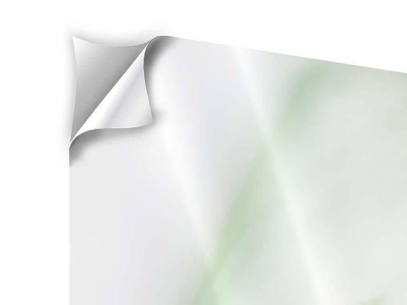 Klebeposter 4-teilig modern XXL Pastinak
