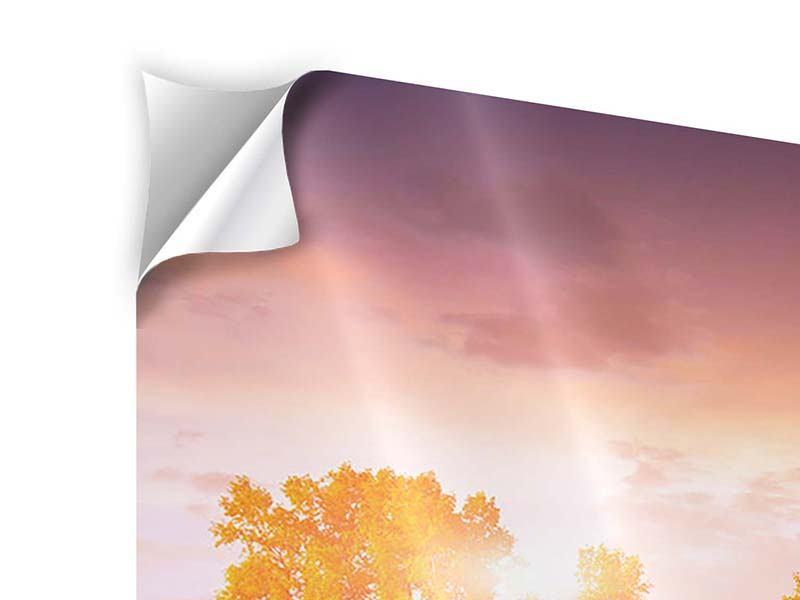 Klebeposter 4-teilig modern Sonnenuntergang am See