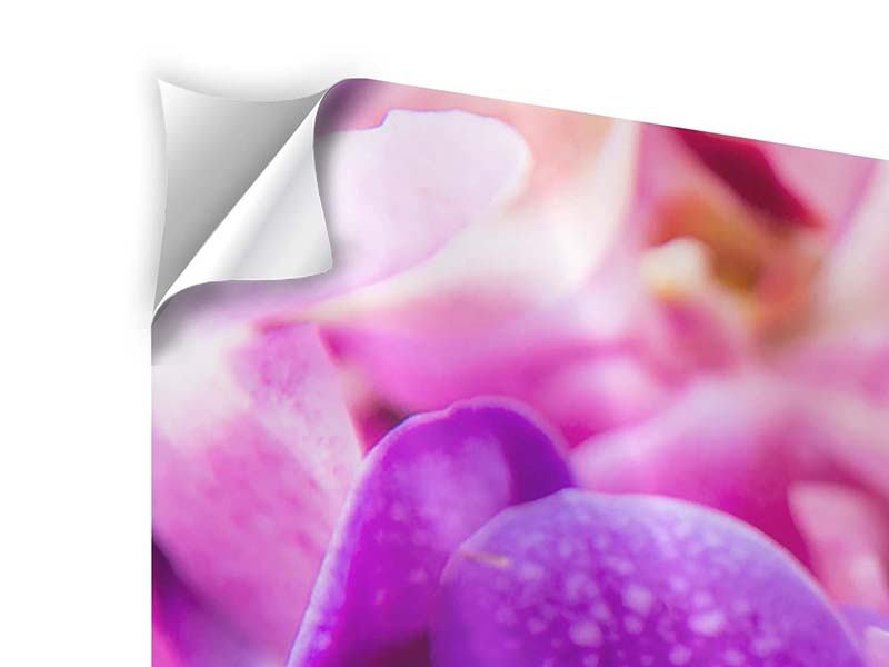 Klebeposter 4-teilig modern Im Orchideenparadies