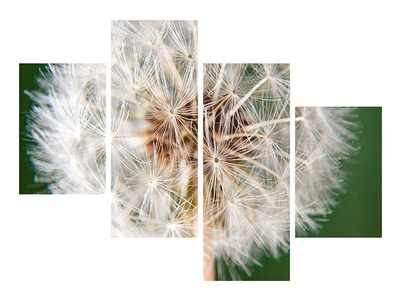 Modern 4 Piece Self-Adhesive Poster Giant Dandelion