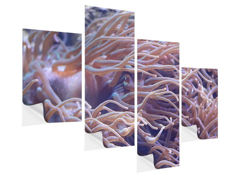 Klebeposter 4-teilig modern Korallenriff