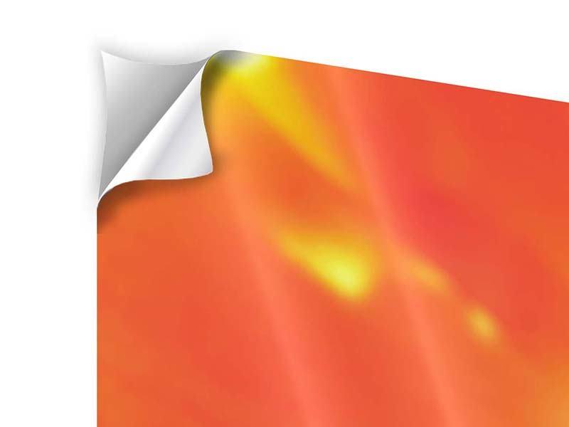 Klebeposter 4-teilig modern Die Narbe einer Tulpe XXL