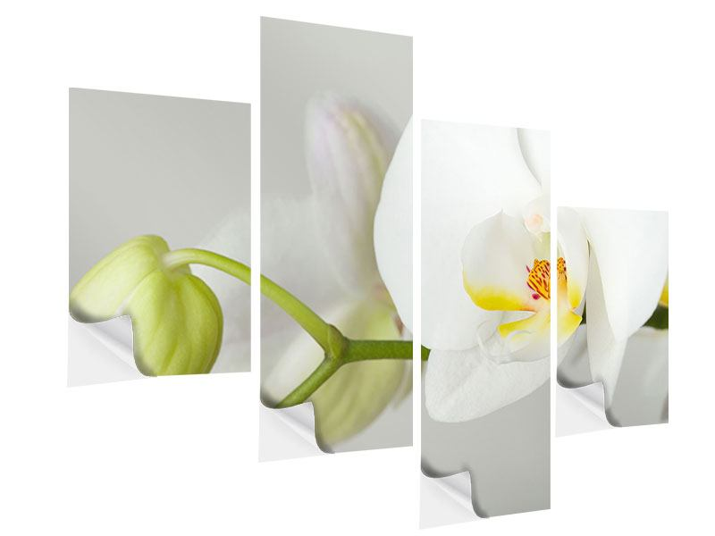 Klebeposter 4-teilig modern Riesenorchidee