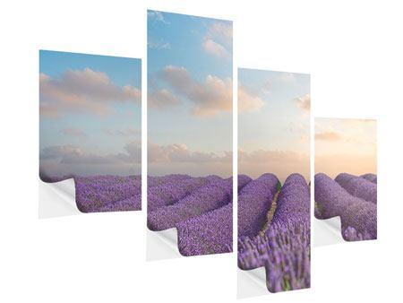 Klebeposter 4-teilig modern Das blühende Lavendelfeld