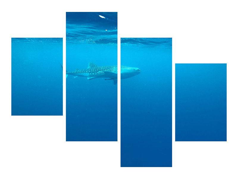 Klebeposter 4-teilig modern Der Walhai