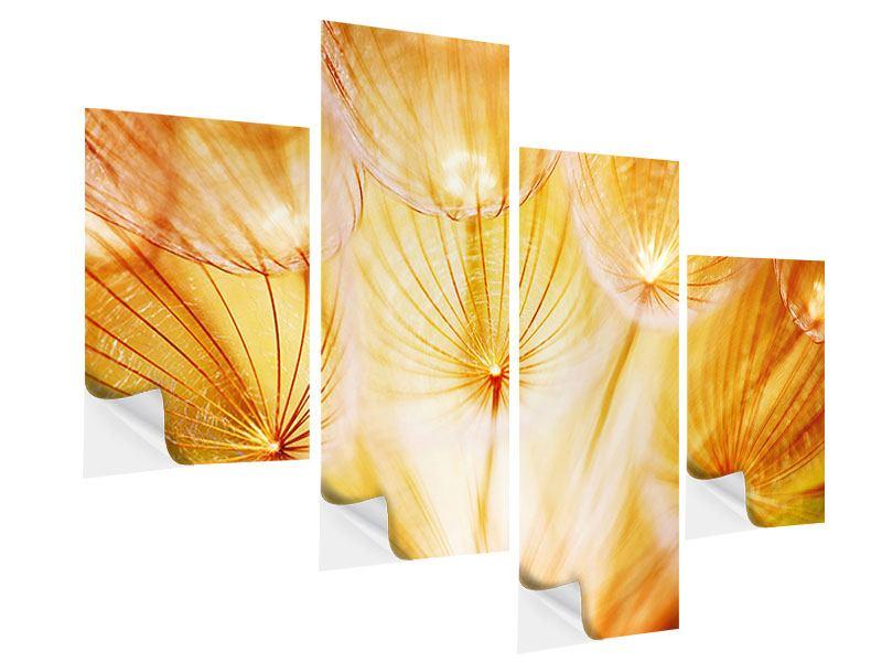 Klebeposter 4-teilig modern Close Up Pusteblume im Licht