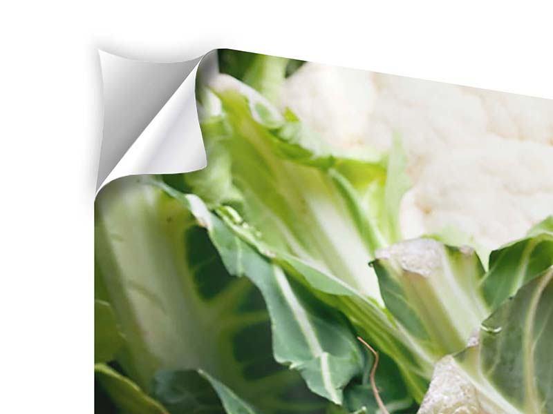 Klebeposter 4-teilig modern Gemüse