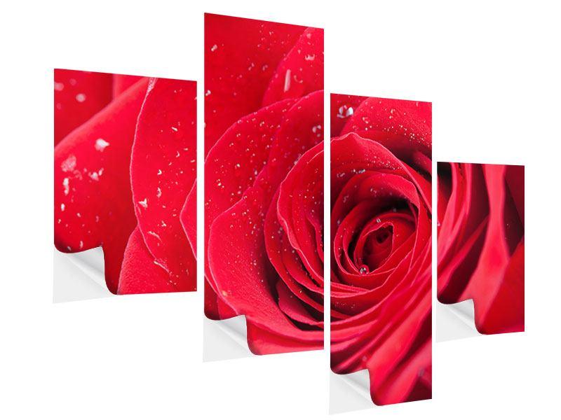 Klebeposter 4-teilig modern Rote Rose im Morgentau