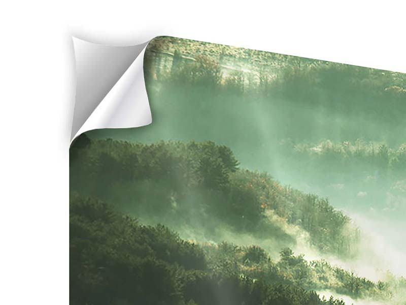 Klebeposter 4-teilig modern Über den Wäldern