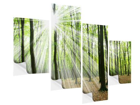 Klebeposter 4-teilig modern Magisches Licht in den Bäumen