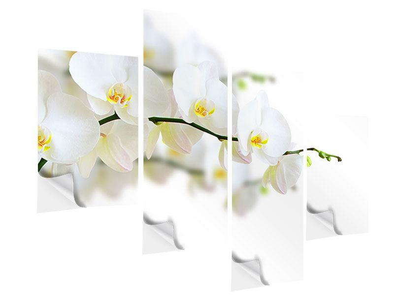 Klebeposter 4-teilig modern Weisse Orchideen