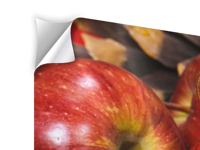 Klebeposter 4-teilig modern Äpfel