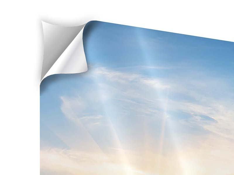 Klebeposter 4-teilig modern Sonnenaufgang im Park