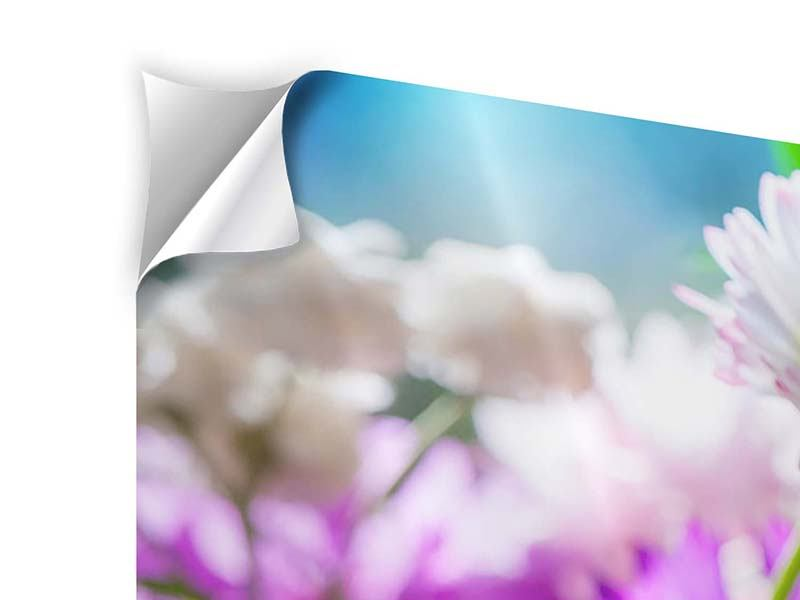 Klebeposter 4-teilig modern XXL Gartenblumen