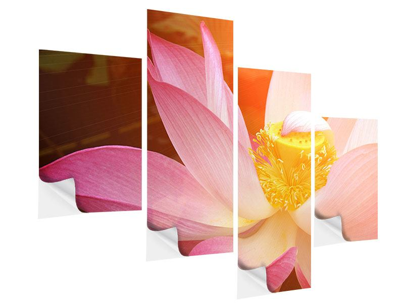 Klebeposter 4-teilig modern Close Up Lotus