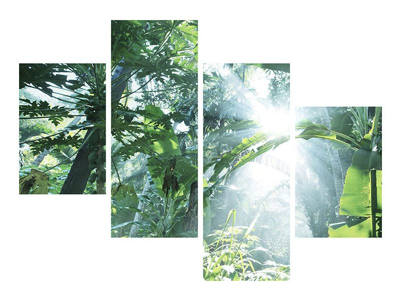 Klebeposter 4-teilig modern Dschungelstar