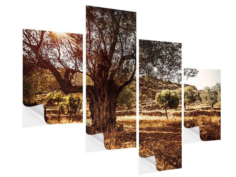 Klebeposter 4-teilig modern Olivenhain