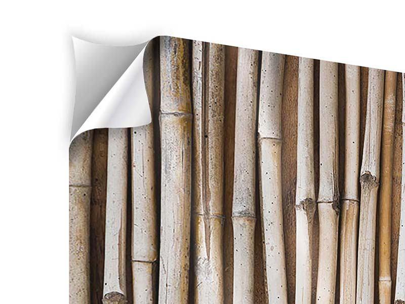 Klebeposter 4-teilig modern Getrocknete Bambusrohre