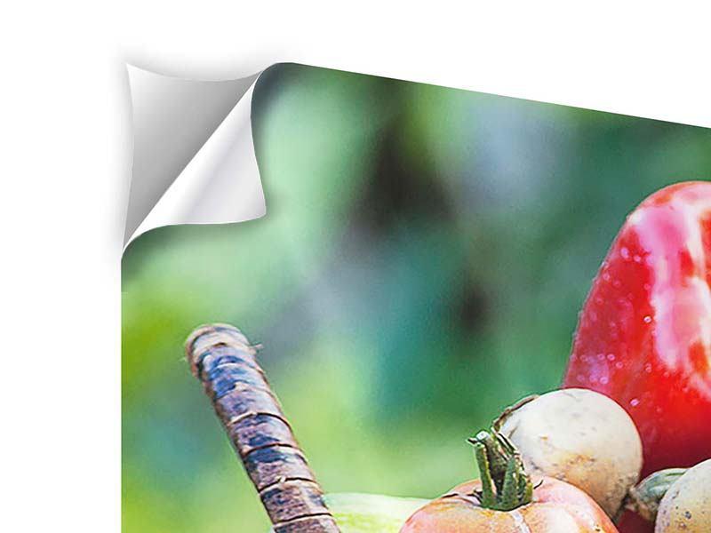 Klebeposter 4-teilig modern Gemüsekorb