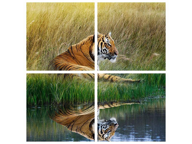 Klebeposter 4-teilig Der Tiger