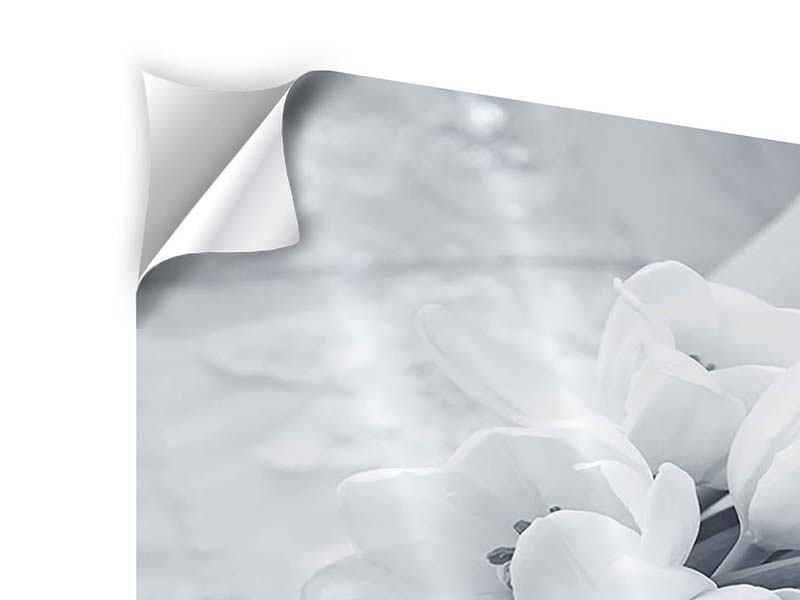 Klebeposter 4-teilig Romantisches Tulpenbukett