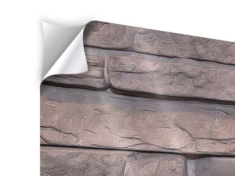 Klebeposter 4-teilig Luxusmauer