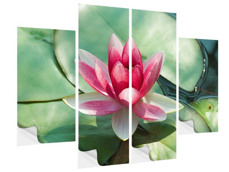 Klebeposter 4-teilig Der Frosch und das Lotusblatt