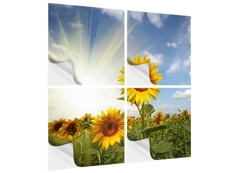 Klebeposter 4-teilig Sonnenblumen im Sonnenlicht