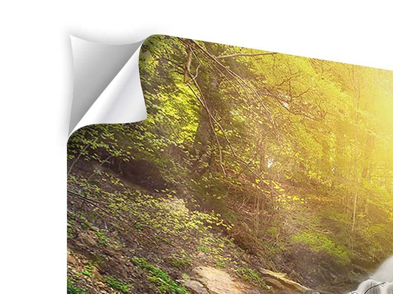 Klebeposter 4-teilig Naturschönheit