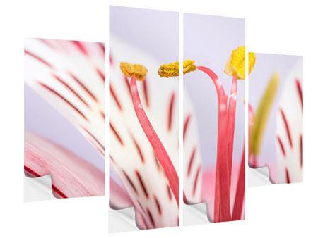 Klebeposter 4-teilig Close Up Die exotische Schönheit