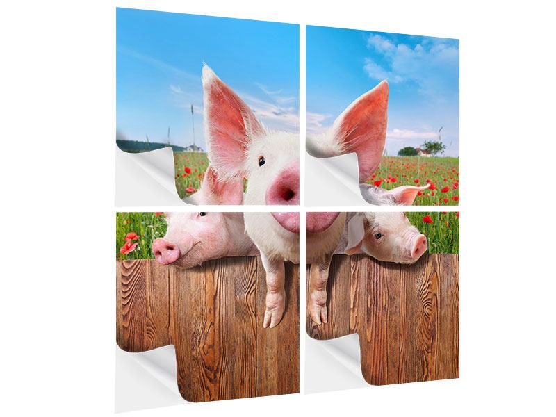 Klebeposter 4-teilig Schweinchen im Glück