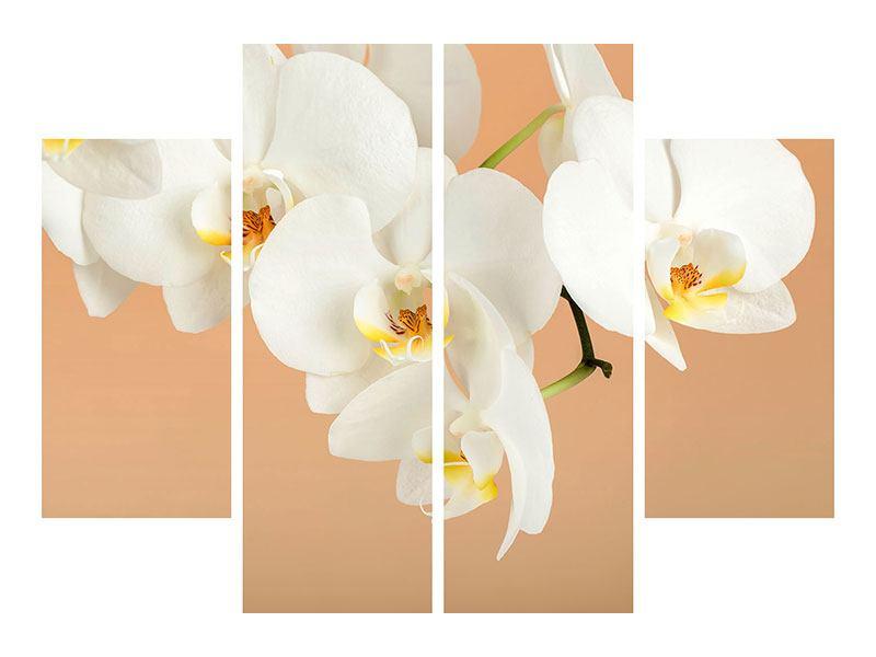 Klebeposter 4-teilig Weisse Orchideenblüten