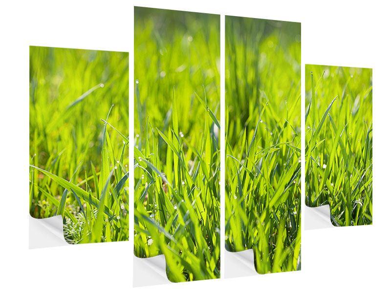 Klebeposter 4-teilig Gras im Morgentau