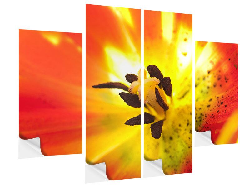 Klebeposter 4-teilig Die Narbe einer Tulpe XXL