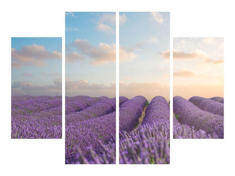 Klebeposter 4-teilig Das blühende Lavendelfeld